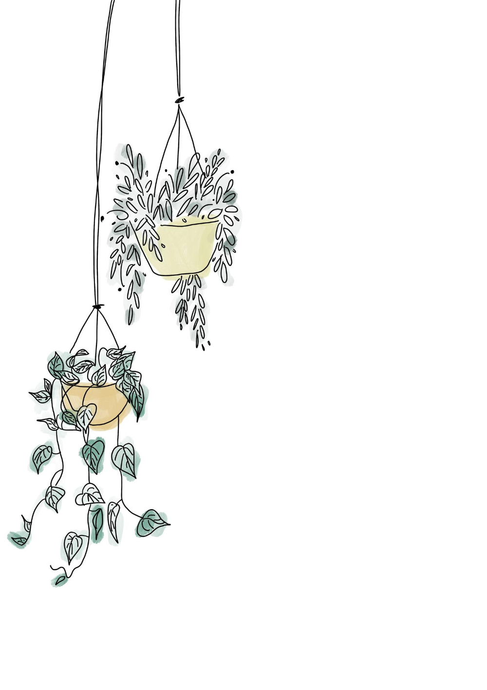 Hanging Plants Digital Print Plant Drawing Line Art Drawings Plant Art