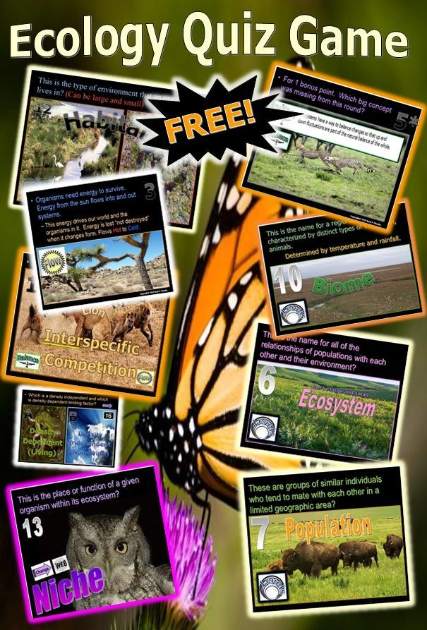 Ecology Quiz Game, Ecosystems, Food Webs Ecology, Fun