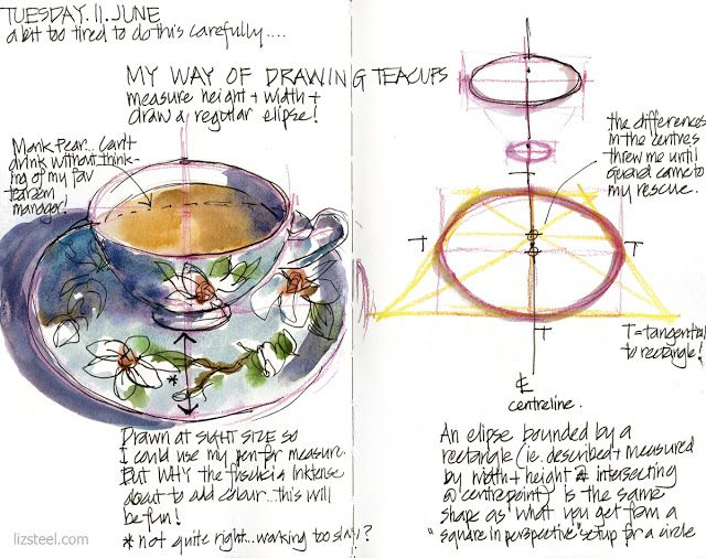 Liz Steel: How to draw teacups (and other ellipses) | Ink and ...
