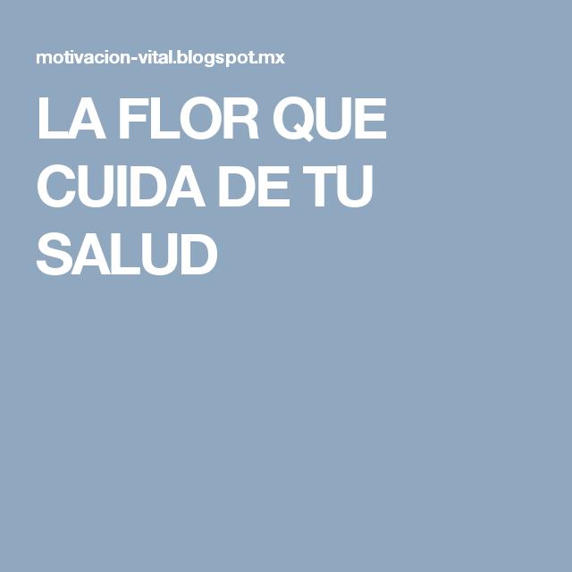 LA FLOR QUE CUIDA DE TU SALUD
