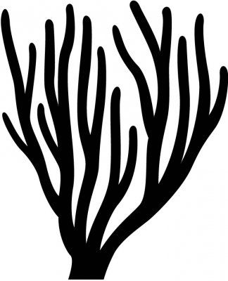 CORAL silhouettes | Coral Sea life Silhouette : Custom ...