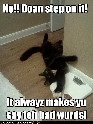 Say The Bad Words Cats Black Cat Humor Cat Problems