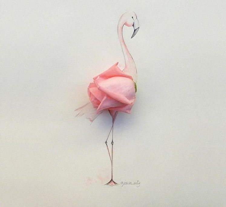 6146bc09280 Pink Rose Flamingo Art Illustration. Very cool!