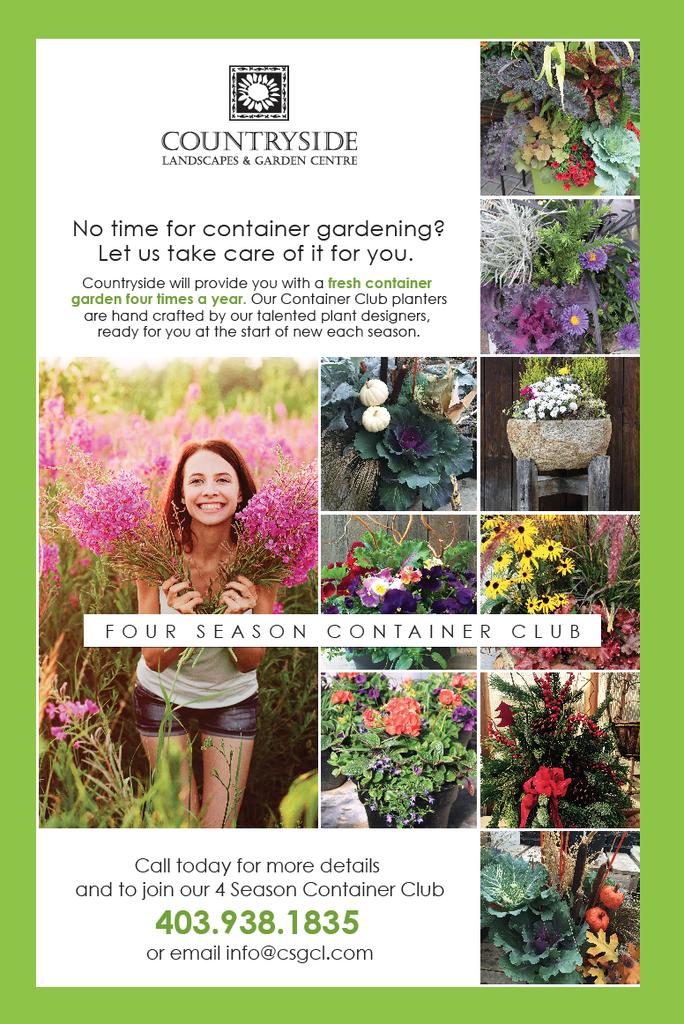 Four Season Containers – Countryside Garden Centre 400 x 300