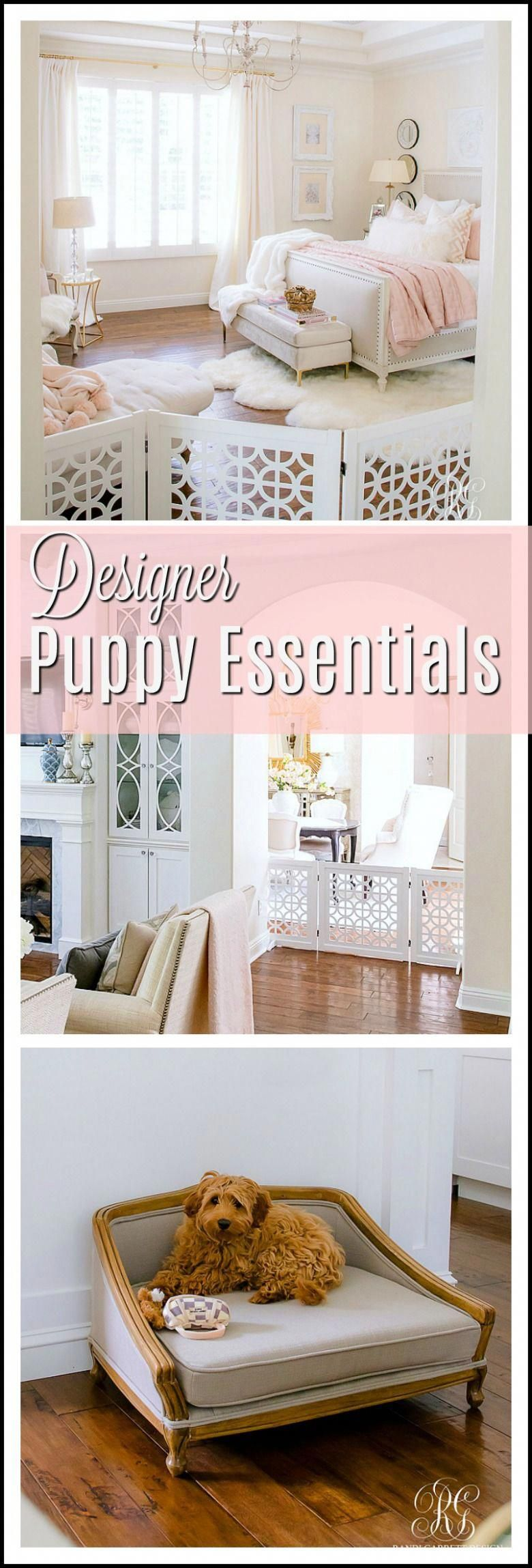 Meet Chloe plus Puppy Furniture + Essentials you will Love is part of Puppy furniture, Small bedroom furniture, Dog bedroom, Guest bedroom design, Furniture, Puppy room - Meet Chloe plus Puppy Furniture + Essentials you will Love  designer puppy pieces that will look amazing in your home and your puppy will love