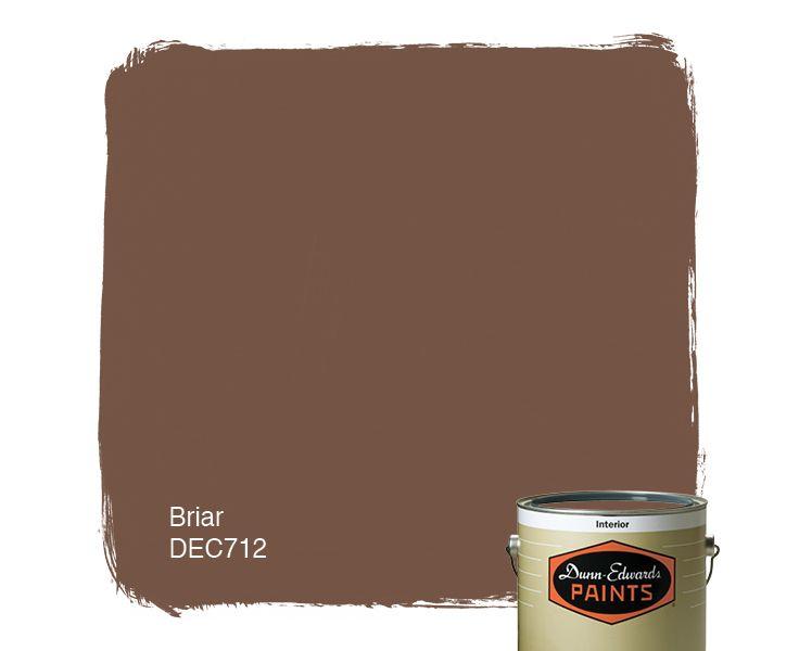 Dunn edwards paints brown paint color briar dec712 for Dunn edwards paints colors