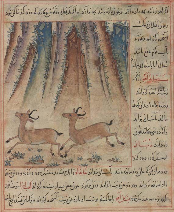 Two Gazelles Running From Ibn Bakhtishu S Uses Of Animals Persia Maragha 1297 1300 Ms M 500 Fol 36v Purchased By Pierpont Morg Sanat Hayvanlar Cizim