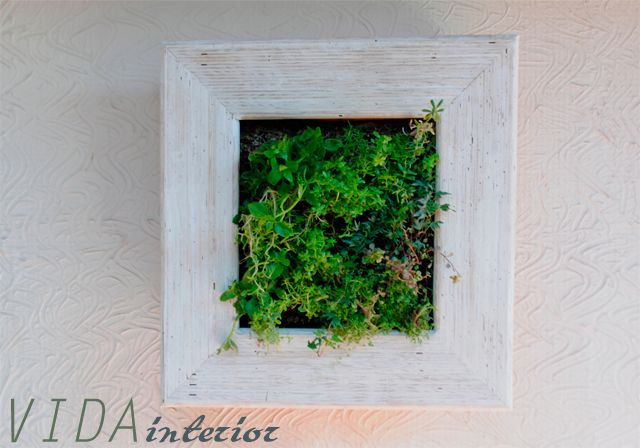 Green wall , living frame #design #diseño