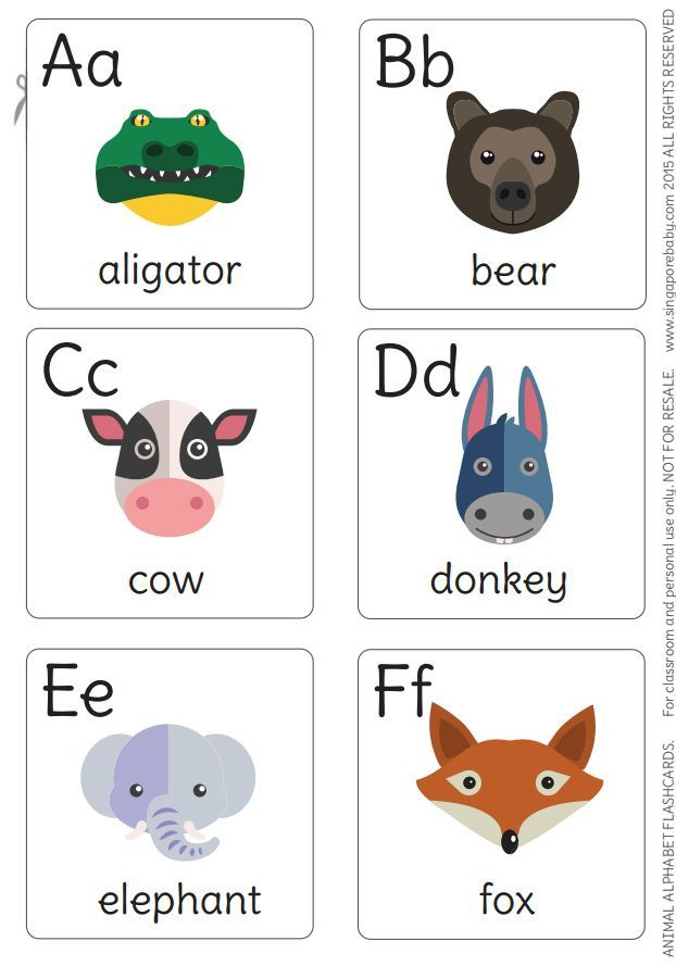Animal Flash Cards Increase Skill Self Learning Education Fun For Kid Baby Child Children & Ya Non-fiction