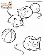 Small Animal Coloring Pages Animal Coloring Pages Cool Coloring Pages Cow Coloring Pages