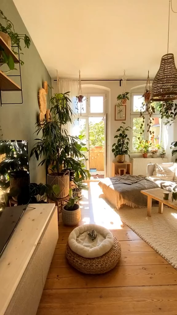 Relief home interior decor with houseplants