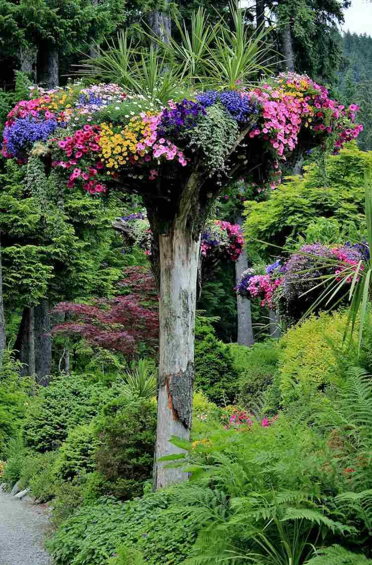 Arbre mort bois flott et souche d 39 arbre pour d corer le for Decoracion de arboles de jardin