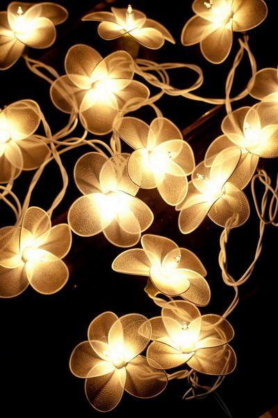 20 white flower string lights for partyfairyweddingdecorbedroom 20 white flower string lights for partyfairyweddingdecorbedroom lights mightylinksfo