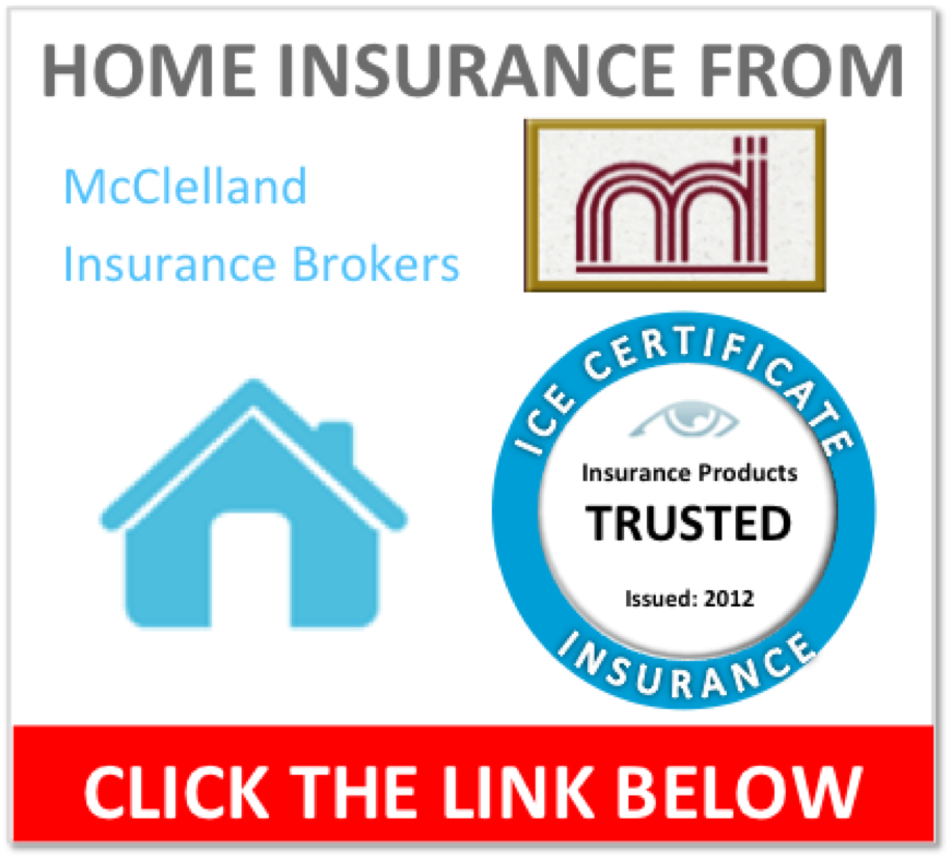 InsurEye Consumer Experience Certificate for McClelland