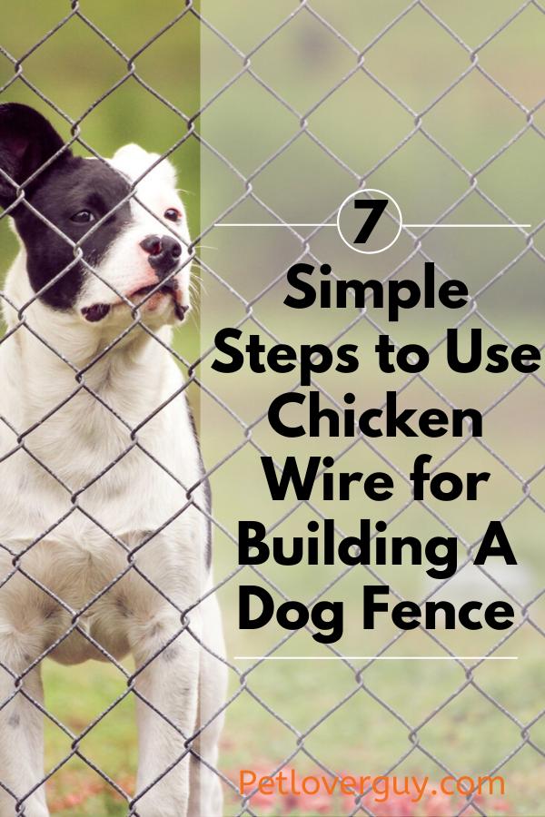 Chicken Wire Chicken Wire for Dog Fence