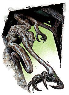 D Fight Club: Quarrian, Choker Warlock
