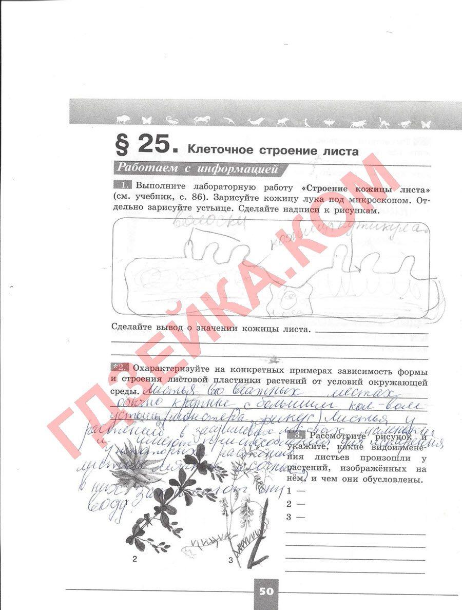 История россии 20-начало 21 века 11 класс шестаков гдз