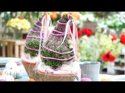 DIY Herbstdeko selber machen Heide als Zwergenmütze