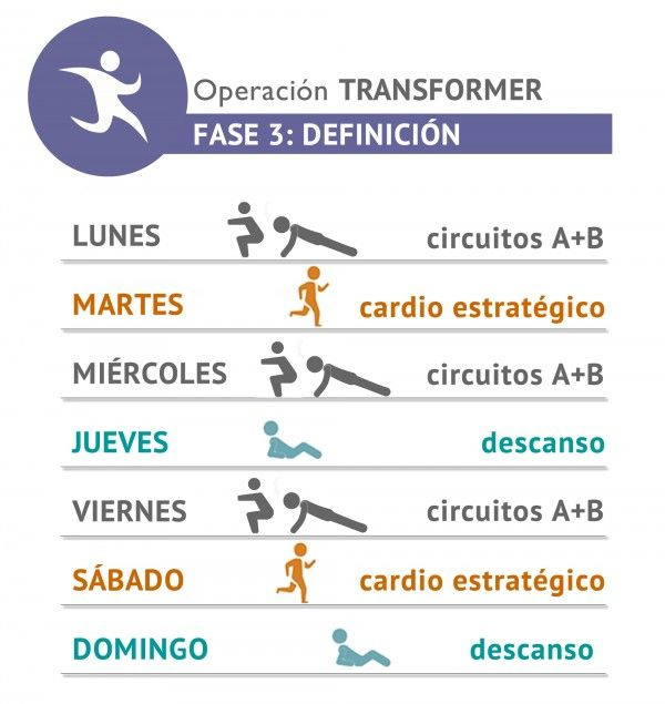 Circuito Quema Grasa Gimnasio : Nueva operación transformer fase entrenamiento