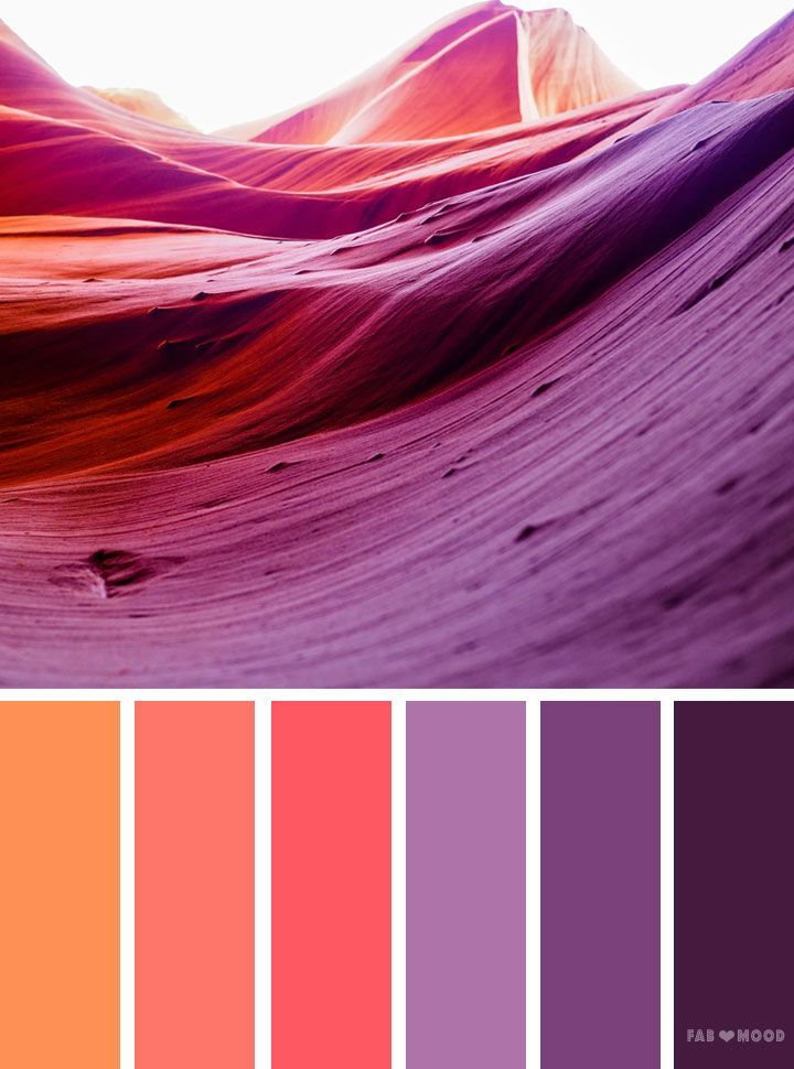 Orange And Purple Color Scheme Peach Palette Looking For Inspiration