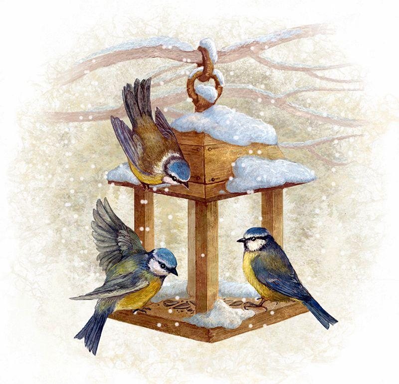 Картинки детям птицы зимой