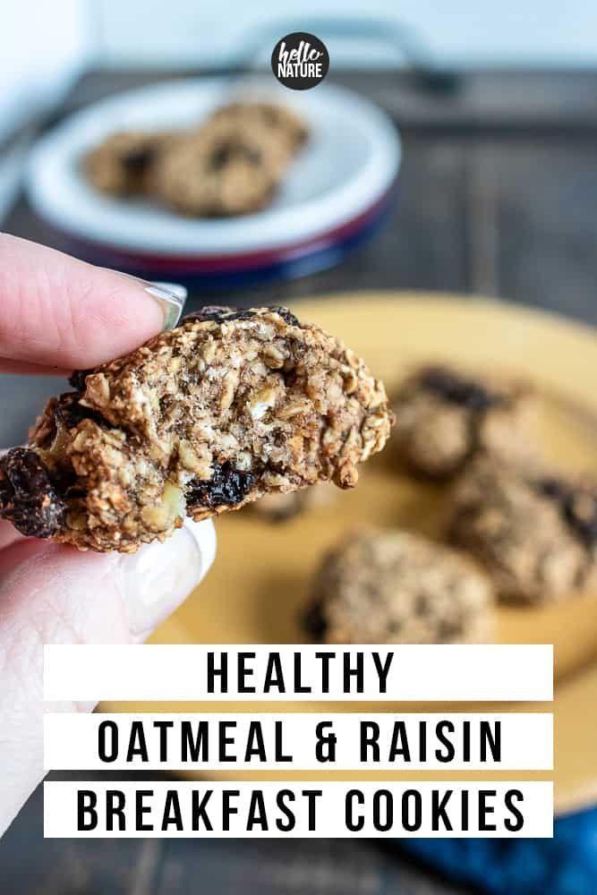 Healthy Oatmeal Raisin Cookies #glutenfreebreakfasts