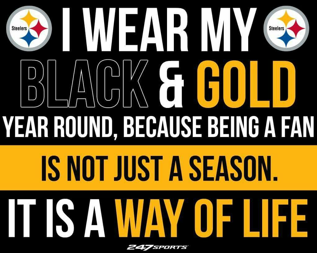 Steeler Fan For Life With Images Pittsburgh Steelers Logo