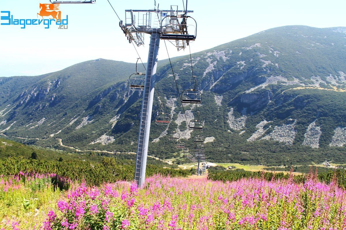 planina-stokova-snimka