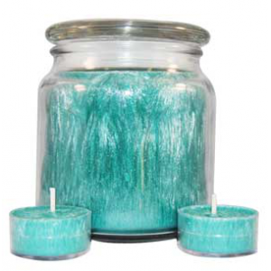 palm container wax 1 case - Natures Garden Candles