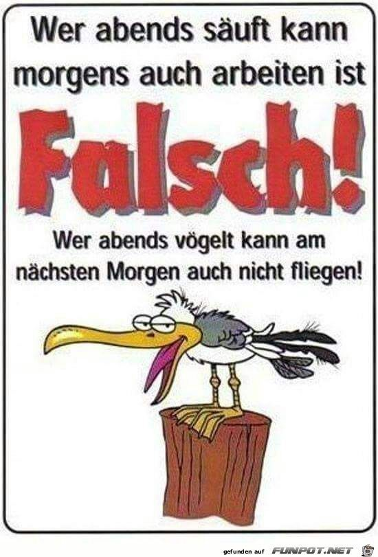 lustiges Bild 'FALSCH !!!.jpg'- Eine von 36512 Dateien in der Kategorie ... #wahreworte