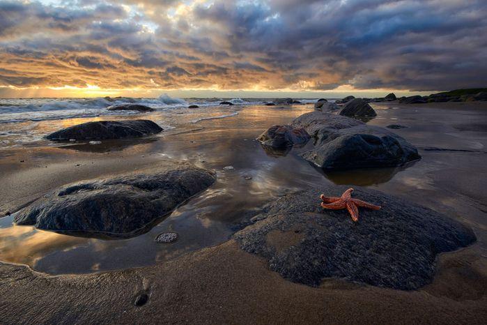 Мыс Голец- белое море (700x466, 368Kb)