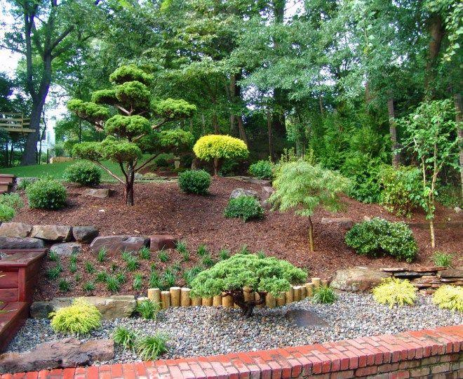 Bright Japanese Maple Coral Bark Convention Dc Metro Asian Landscape Decoration Ideas With Asian Land Landscape Design Landscaping With Rocks Asian Landscape