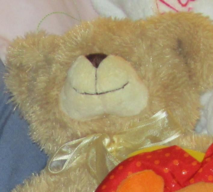 Teddy Bear Lost in NSW Australia  Our little girl is devastated. She has lost her teddy bear. Lost today on a walk between Lenthall St Kensington and Angels on the Bay Day Care Rosebery (NSW Australia) between 3.15 and 4pm. We retraced our steps but no joy. He is about 30cm tall, light brown and wearing a light green vest. Looks extremely well loved. If you have found him please PM me. Thank you. https://www.facebook.com/seana.trehy #lost #teddybear #NSW #Australia