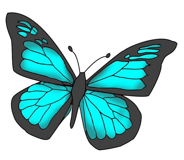 blue and black colored butterfly
