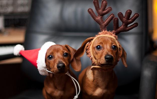 Não saia marcando todo mundo nas fotos de Natal