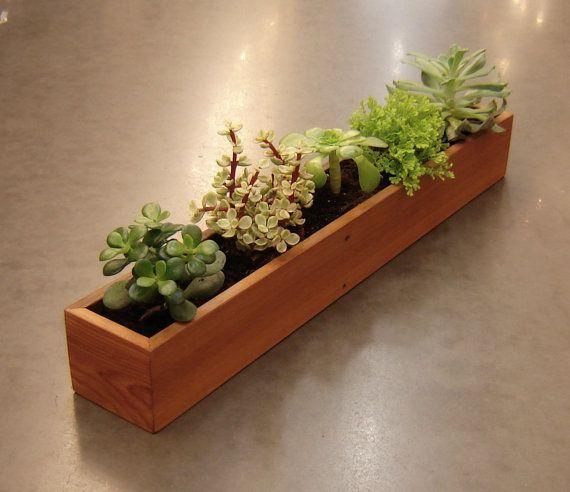 Extra Long Window Succulent Planter Indoor Gardening
