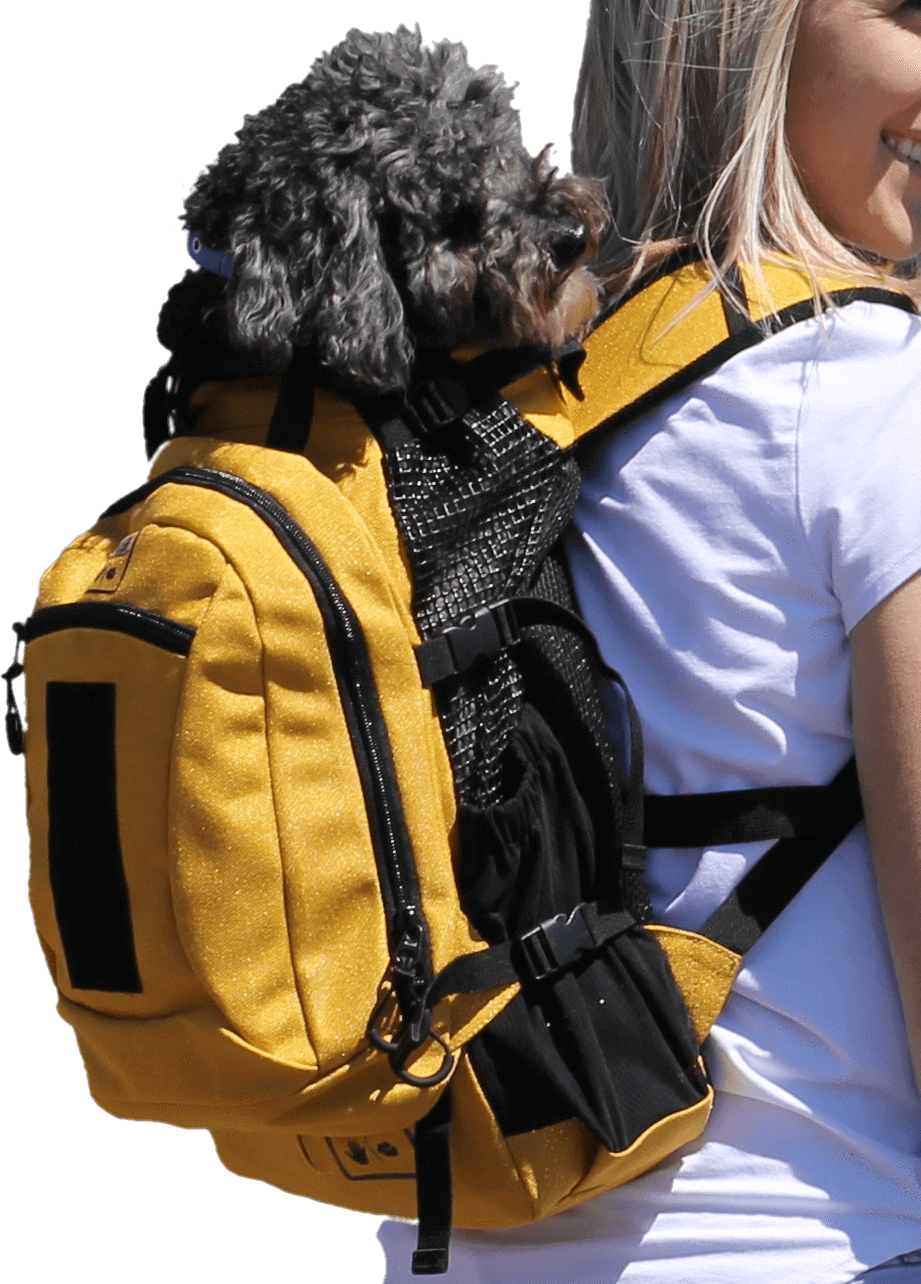 Air plus Dog carrier, Dog travel, Pet carriers