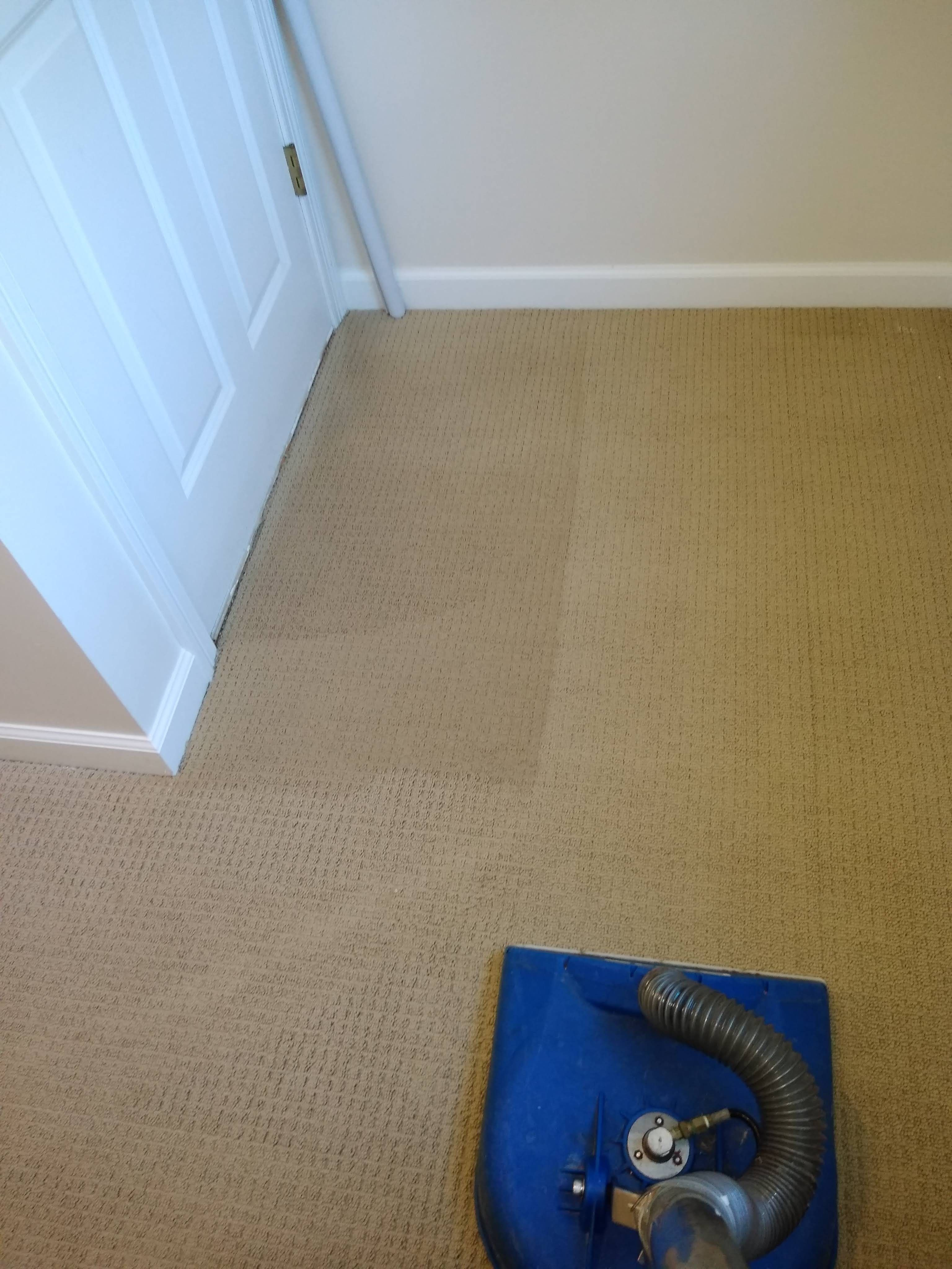 Carpet Cleaning In Massachusetts By Alpine Cleaners How To Clean Carpet Commercial Carpet Cleaners Cleaning Upholstery