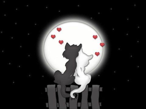 """Раскраска антистресс """"Влюбленные котики"""" процесс и ..."""