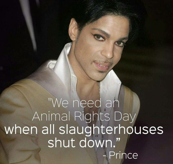 Famous Animal Rights Quotes: We Need An Animal Rights Day When All Slaughterhouses Shut