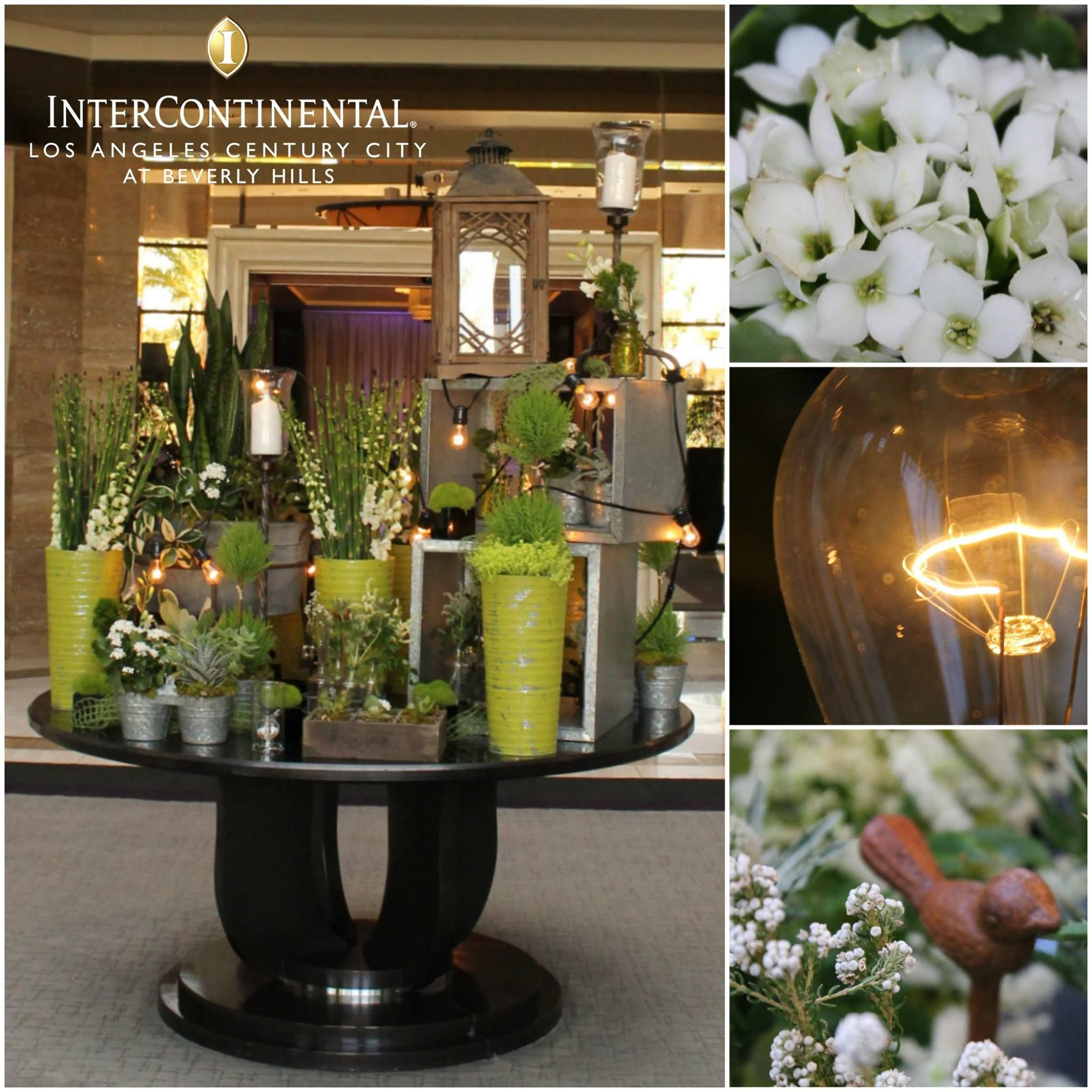 We Find That Our Flowers In Lobby Have A Way Of Brightening