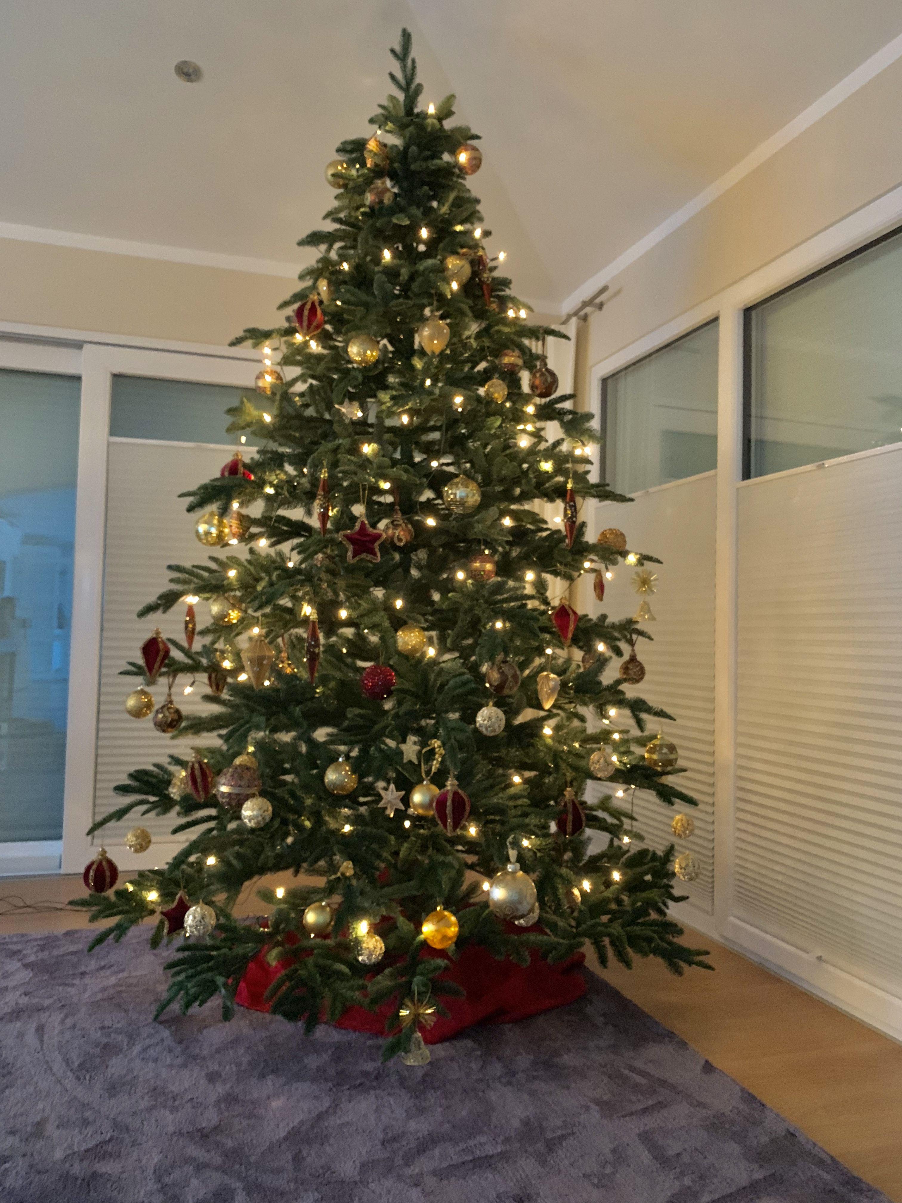 Foto Weihnachtsbaum.Pin Auf Weihnachten