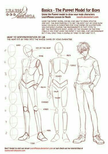 Anime Boy Text Guy Male Height How To Draw Manga Anime Anime Drawings Tutorials Manga Drawing Guy Drawing