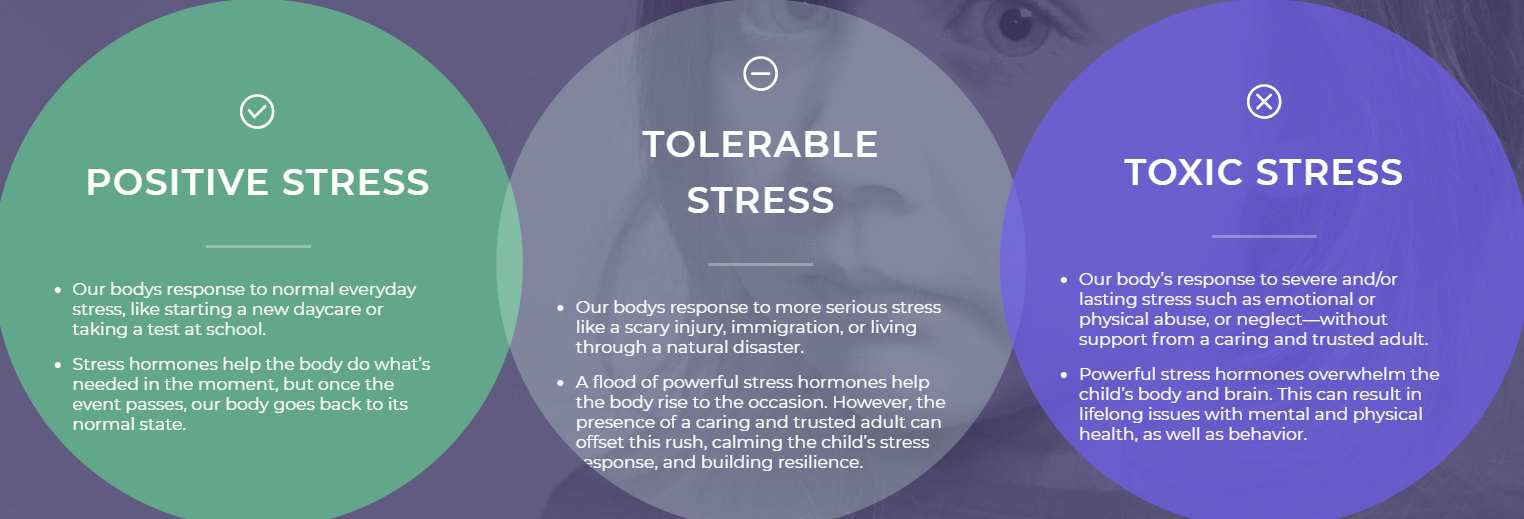 Know the Signs of Toxic Stress in Children | Parenting ...
