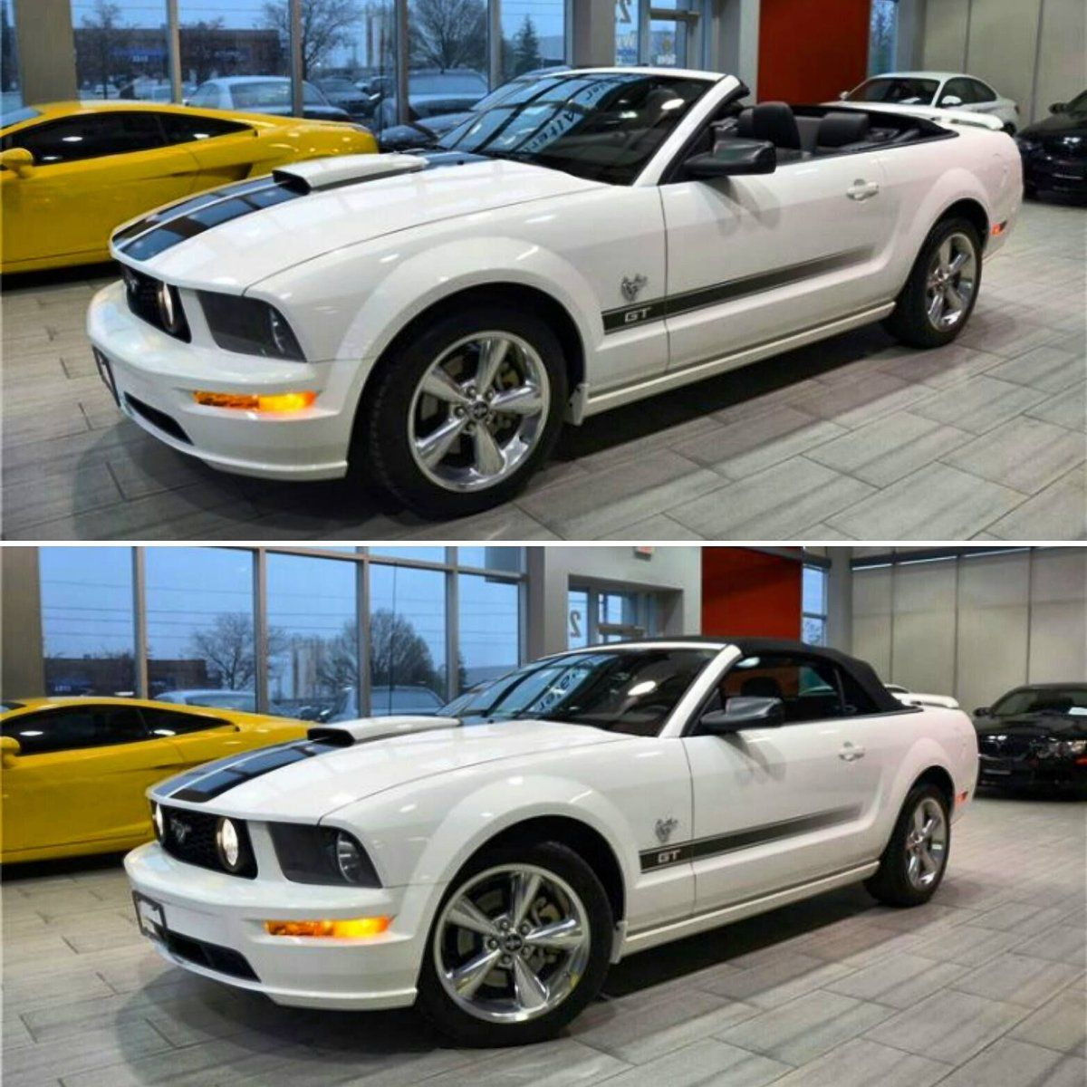 With Or Without Roof 2009 Ford Mustang Gt 45th Anniversary With