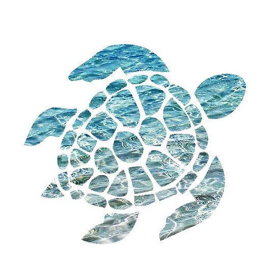 Sea Turtle Turtle Background Turtle Wallpaper Sea Turtle