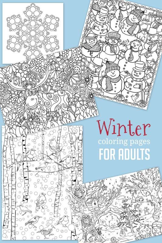 Friday Flash Blog No. 149 {Plus Features | Pinterest | Winter, Adult ...