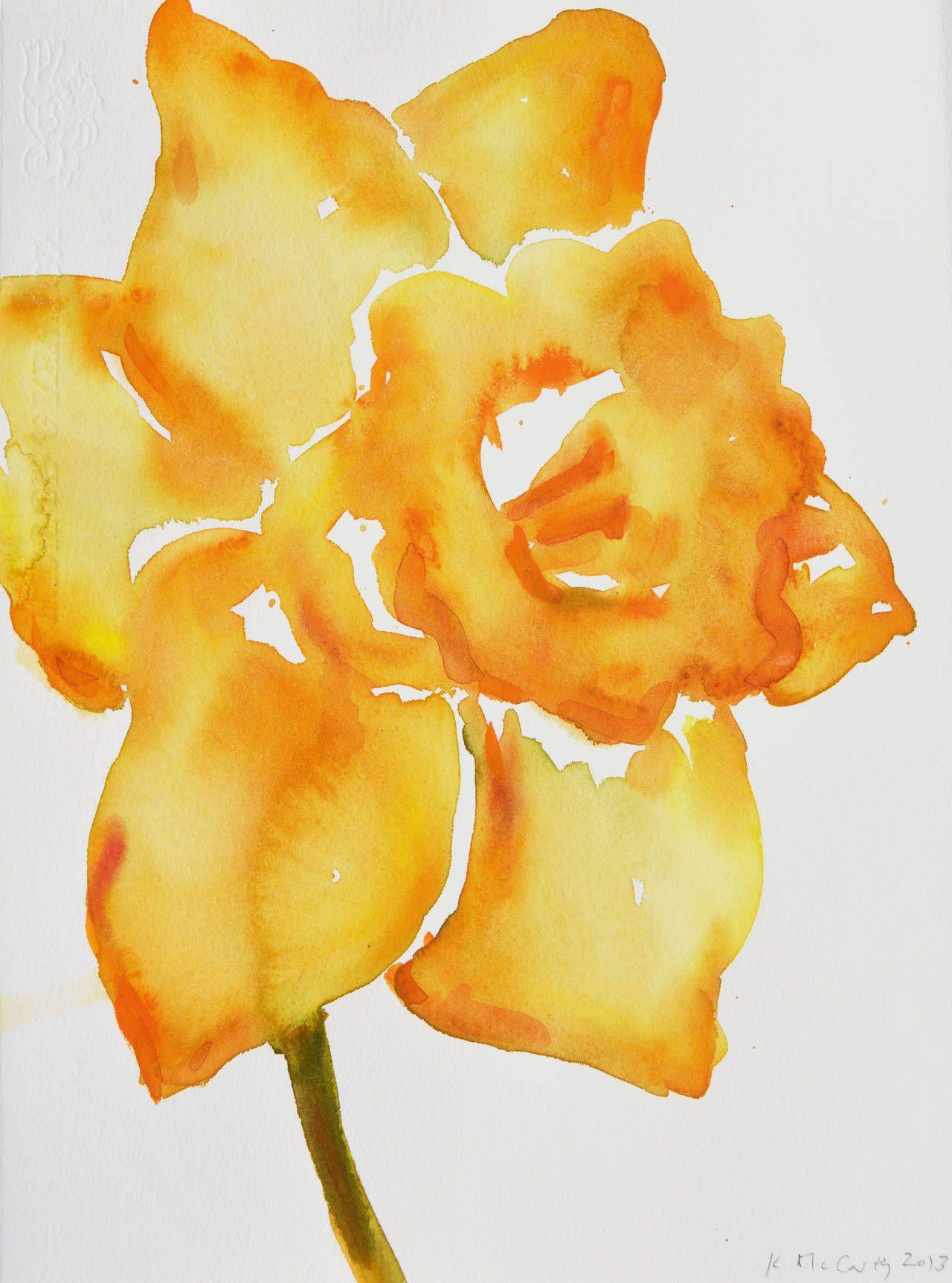 Kim mccarty daffodil life drawing daffodils and art drawings