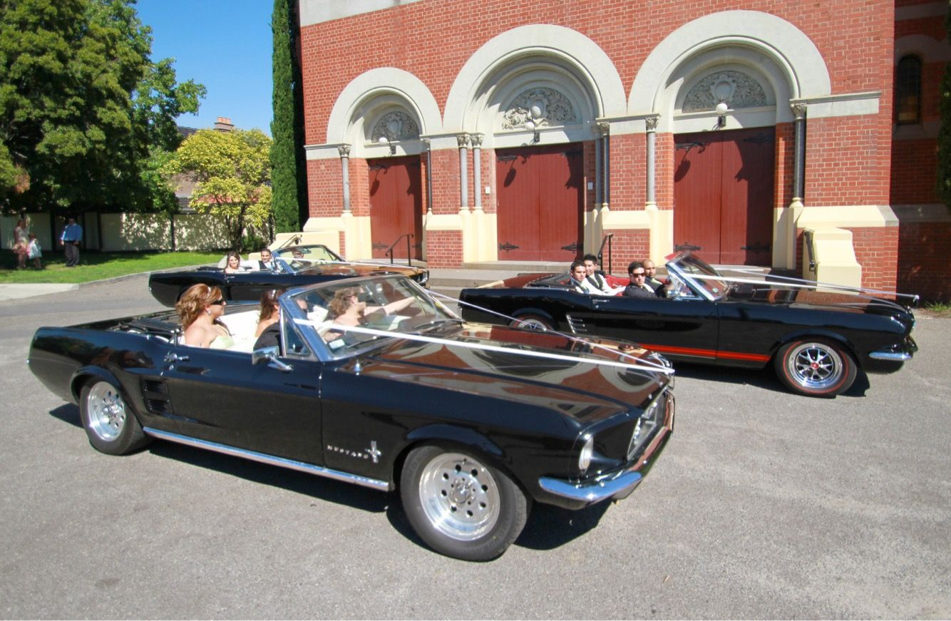 Mustangs in Black 1966 and 1967 GT Convertible Mustangs including our Shelby GT350 out for Franc and Elianne's wedding shoot.