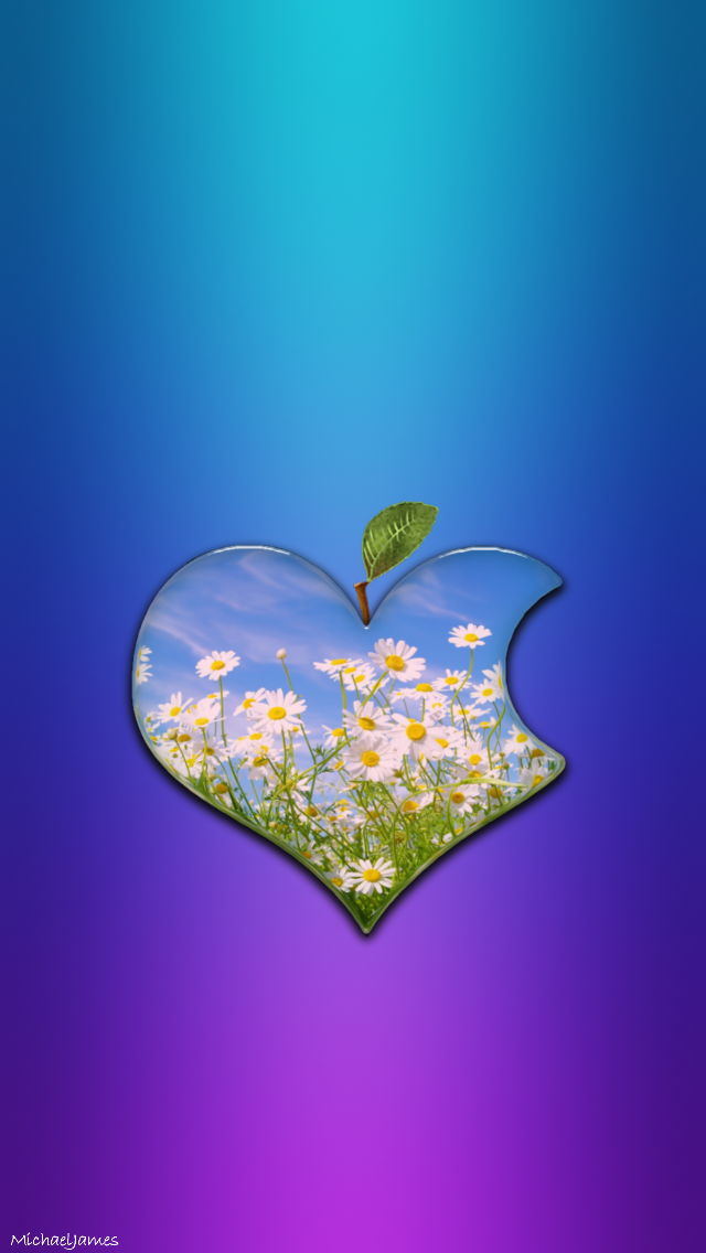 Daisy Heart Apple Logo Apple Iphone 5s Hd Wallpapers Available For